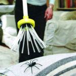 Edderkoppfanger